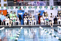 ILSWG17_100BREAST_F006