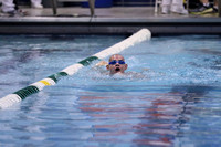 100-Yard Breaststroke for Students with Disabilities